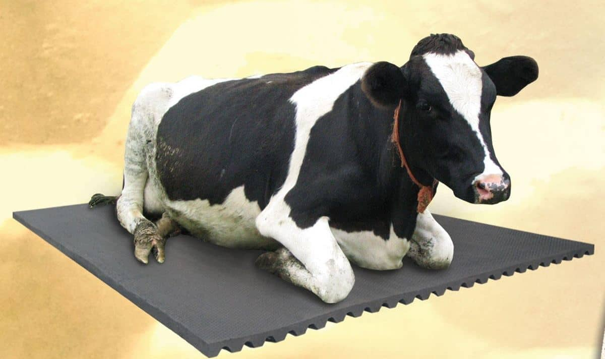 origpic farmers product industry instruments tools surya home mats dairy cow equipments
