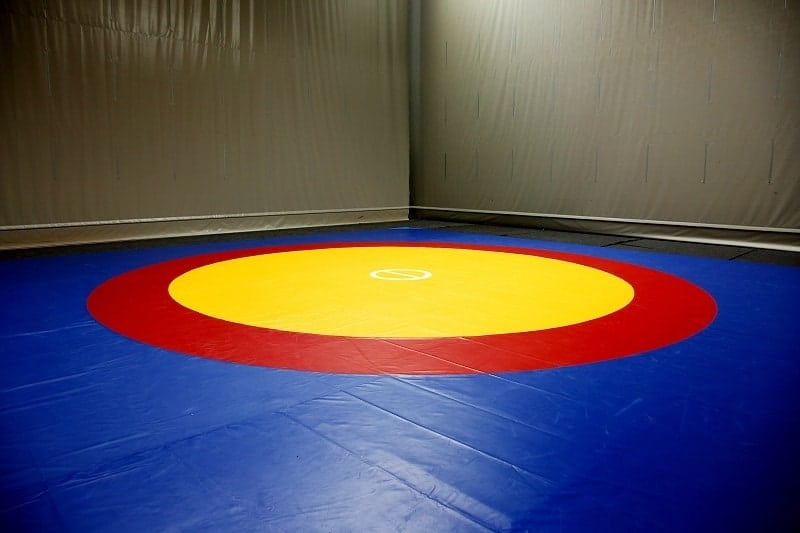 Top Rated Wrestling Mats for Home or School Use