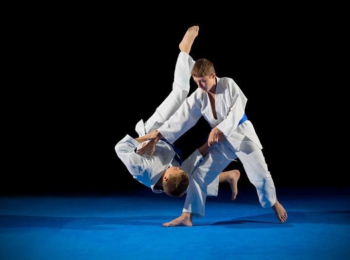 Martial Arts Mats Soft Landing