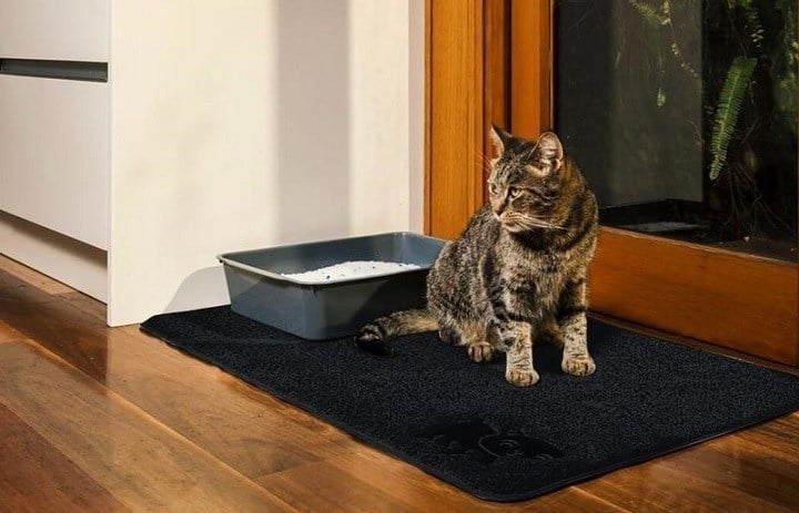 Best Cat Litter Mats – Keep Your Cat Happy and Home Clean
