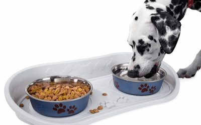 Best Dog Food Mats To Keep Pet's Area Admirably Clean