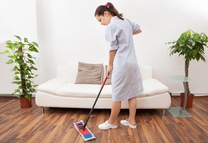Hardwood Mop Portability