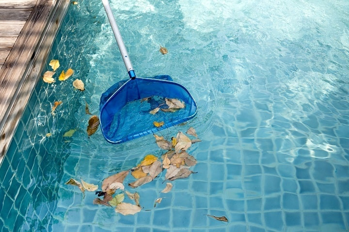 Pool Vacuum vs Skim Net