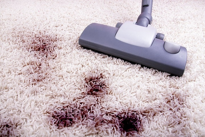 Vacuum for Shag Carpets vs Mold and Other Hard Stains