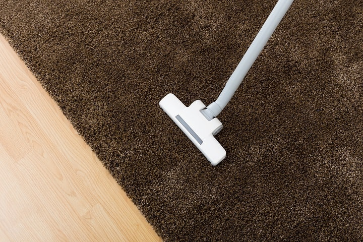 11 Best Vacuums For Shag Carpets for All Types of Thick Rugs